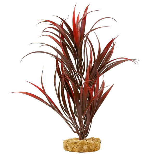 CB-2012-RD - ColorBurst Florals® Gravel Base Plant - Sword Plant - Red