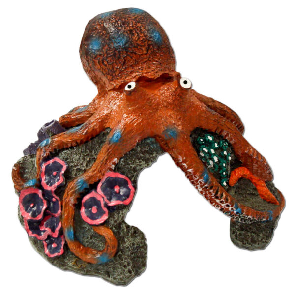 EE-364 - Exotic Environments® Blue Ring Octopus