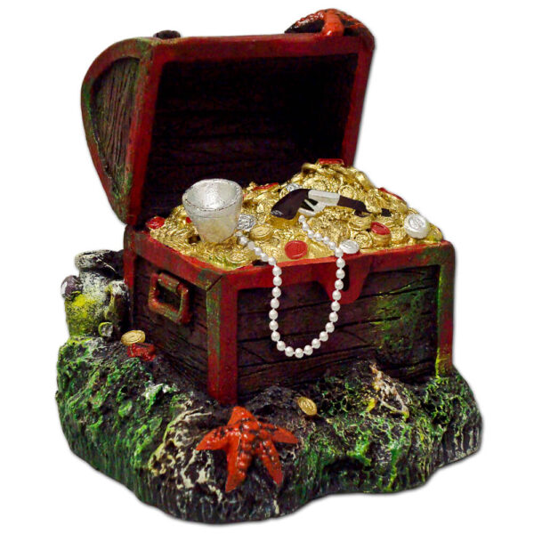EE-387 - Exotic Environments® Small Wonders Captain Kidd's Buried Treasure Chest