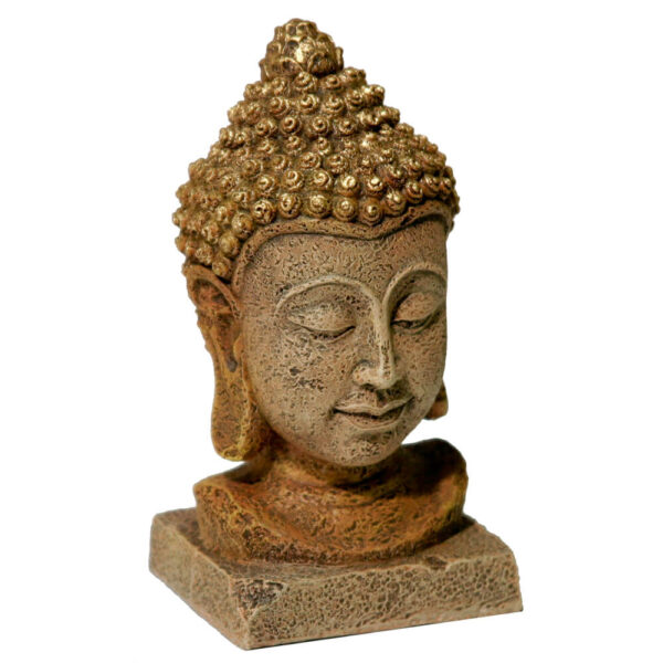 EE-737 - Exotic Environments® Small Wonders III - Thai Buddha Head Large