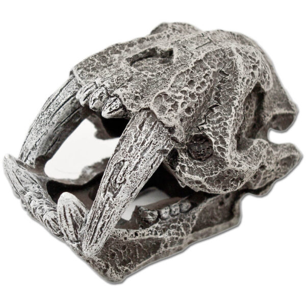 EE-855 - Exotic Environments® Saber Tooth Skull Mini
